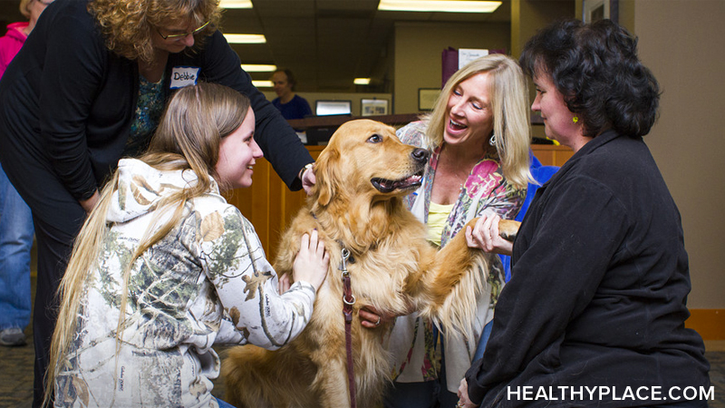 Animal-assisted therapy is beneficial for many types of mental illness and other disorders. Learn about it and who it helps, here at HealthyPlace.